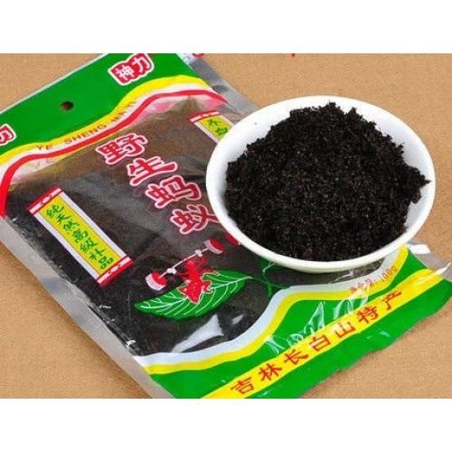 Ревматоидные дикие черные муравьи